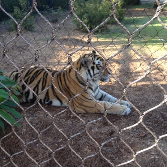 Photo taken at LSU - Mike's Habitat by Laura M. on 10/17/2012