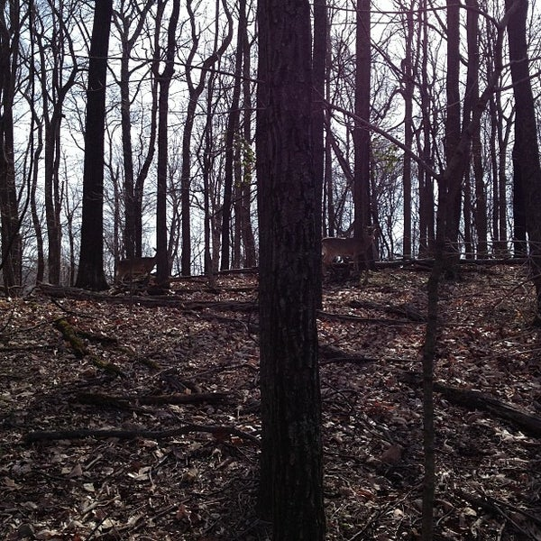 Photo taken at Radnor Lake State Park by Vince Q. on 3/15/2013