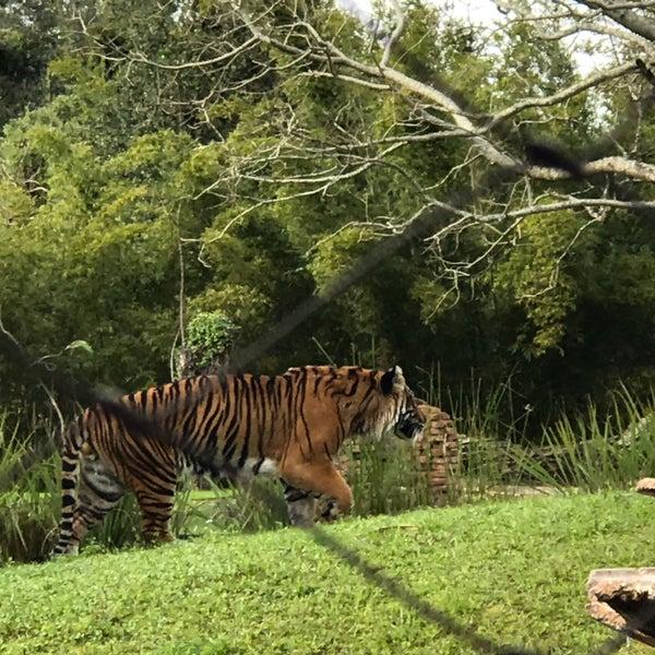 Photo taken at Maharajah Jungle Trek by Dagmar H. on 12/30/2016