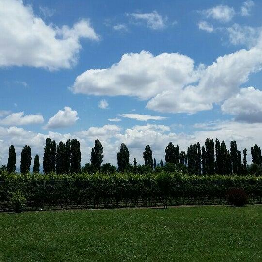 Photo taken at Dominio del Plata Winery by ConBon on 1/6/2016