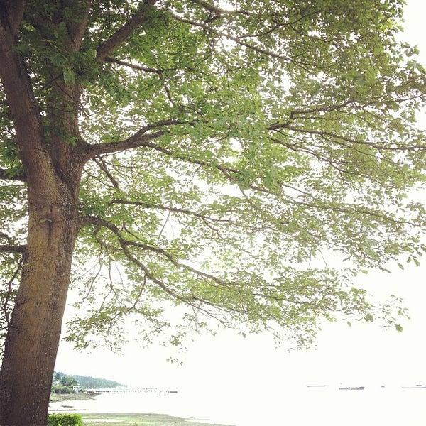 Photo taken at Margaret Pigott Park by Stephen H. on 6/26/2013