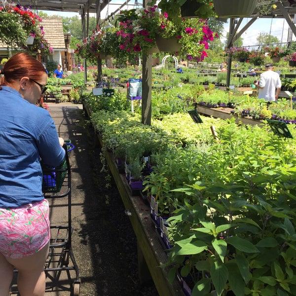Photos at Merrifield Garden Center - Falls Church, VA