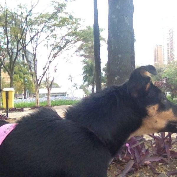 Photo taken at Calçadão Oiapoque by Claro Pinheiro on 4/6/2014