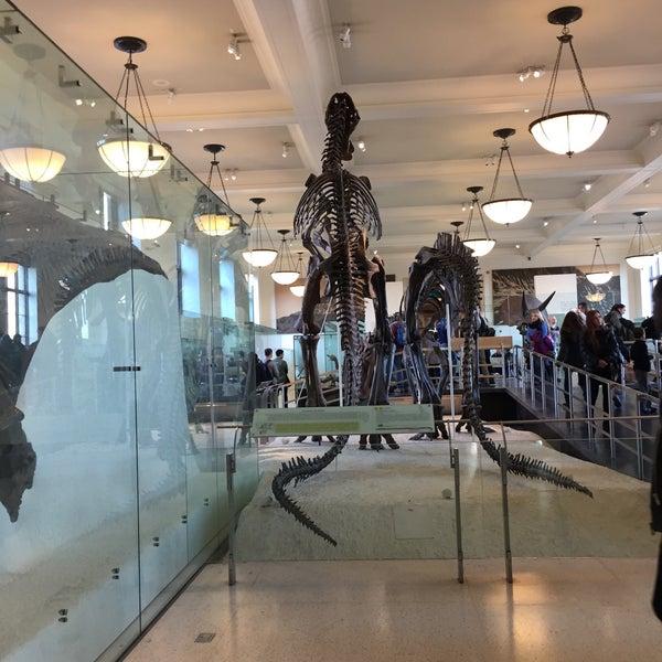 Photo taken at David H. Koch Dinosaur Wing by Priyam C. on 12/22/2016