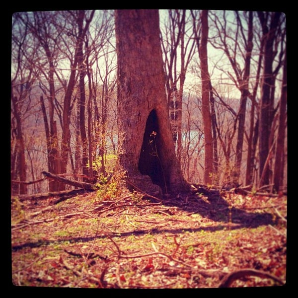 Photo taken at Radnor Lake State Park by Seth W. on 4/5/2013