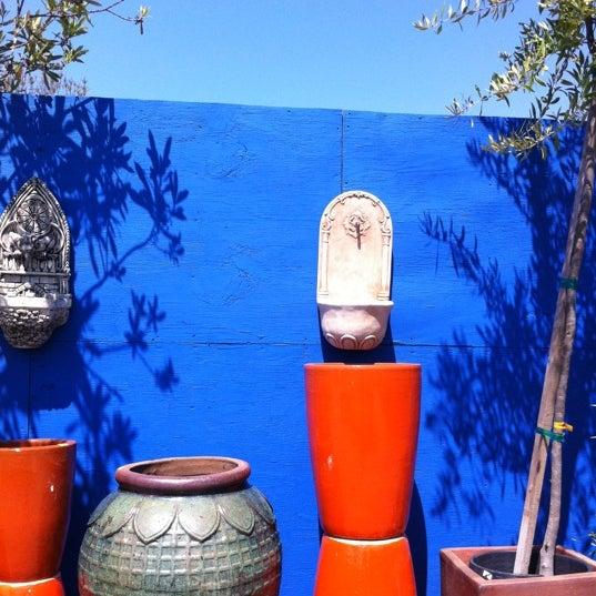 photos at terra sol garden center flower shop in santa barbara
