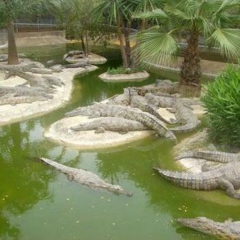 Parques Tem Ticos En La Costa Del Sol