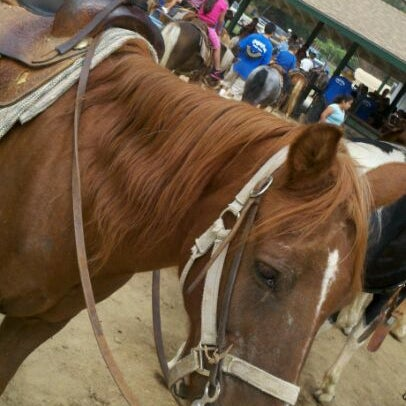 Photo taken at Griffith Park Pony Rides by Derrick E. on 8/25/2012