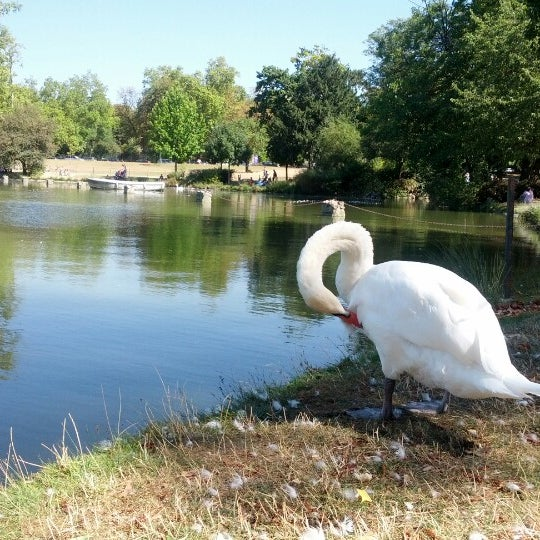 Photo taken at Lac Daumesnil by Samy T. on 9/9/2012
