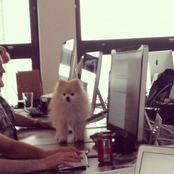 Photo taken at Tumblr HQ by Jeremy J. on 6/26/2012
