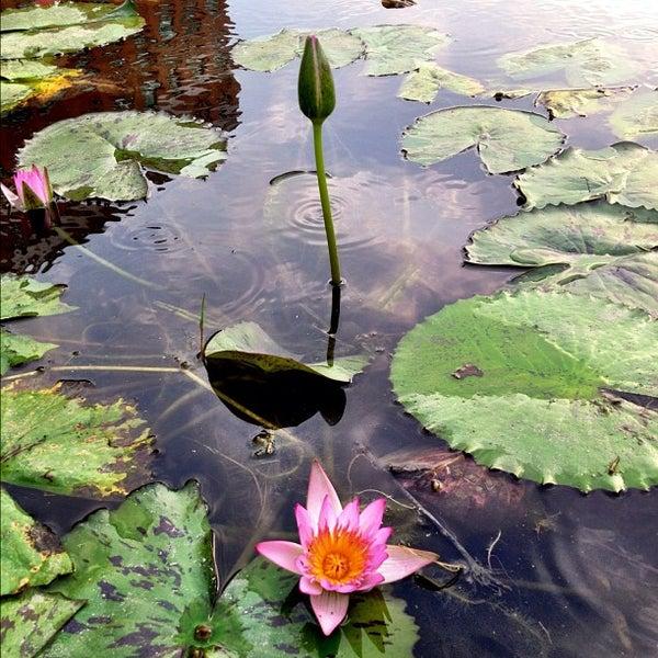 Photo taken at Asia University by Ayanokoji H. on 4/5/2012