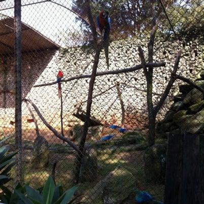 Photo taken at Parque das Hortênsias by Ari L. on 7/28/2012