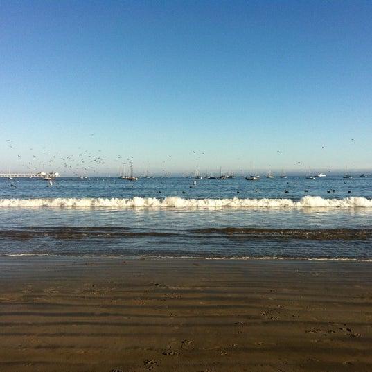 Avila beach san luis obispo ca for Avila beach fishing