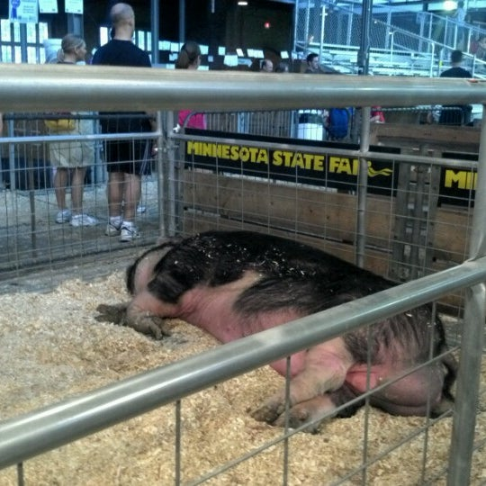 Photo taken at Swine Barn by Mandy S. on 8/26/2012