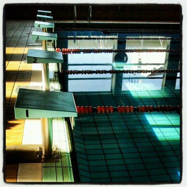 piscina municipal del carmen piscina
