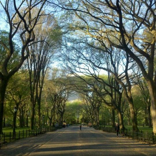 Central Par: Central Park Mall