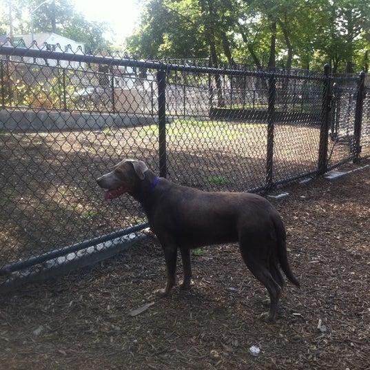 Photo taken at Cunningham Park Dog Run by Linda C. on 7/31/2011