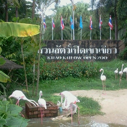 Photo taken at Khao Kheow Open Zoo by Tassayu J. on 9/7/2012