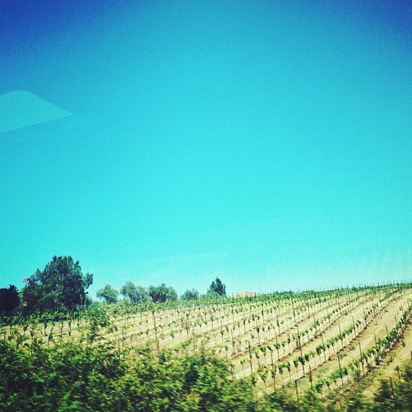 Photo taken at Cline Cellars by Stephany on 7/14/2012