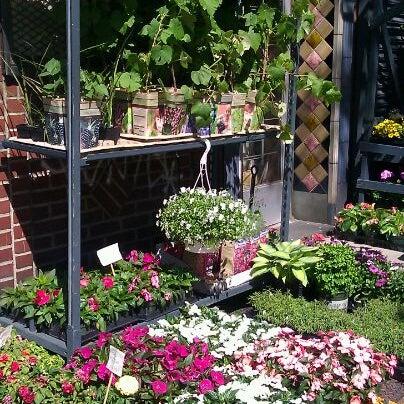 Photo Taken At Botanica Garden Center By Felicity C. On 4/29/2012
