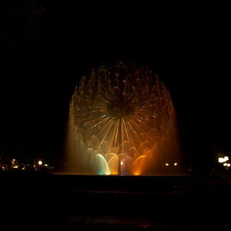 The fountain at night (go with a buddy)