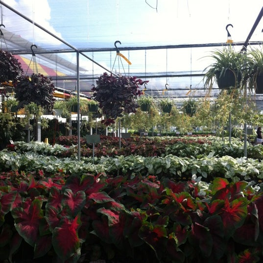 photo taken at houston garden centers by thesquirrel on 5122012 - Houston Garden Centers