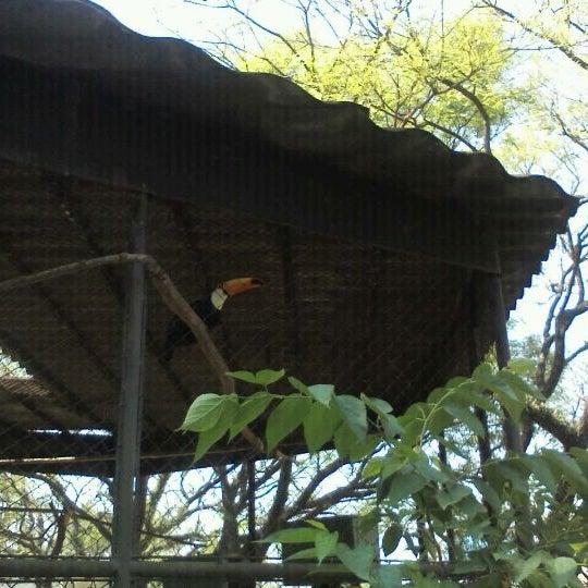 Photo taken at Parque das Hortênsias by Josiel F. on 9/23/2011