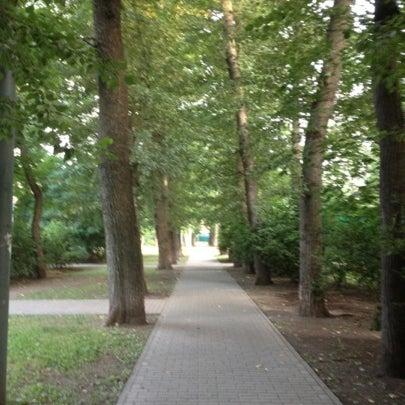 Снимок сделан в Щемиловский детский парк пользователем Elizabeth M. 7/28/2012