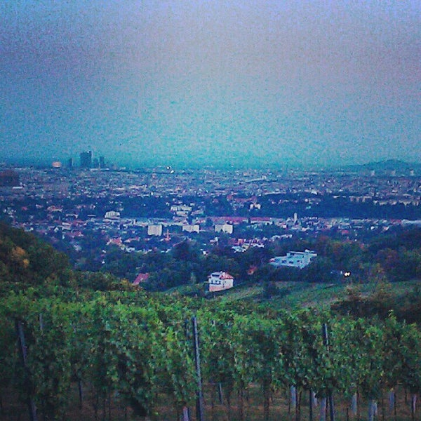 Photo taken at Kahlenberg by lockenrock on 8/23/2012