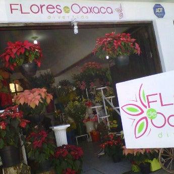 Foto tomada en Florería Flores de Oaxaca por Mónica V. el 12/10/2011