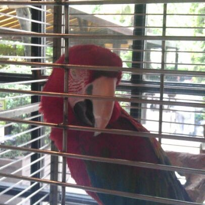 5/13/2012 tarihinde Levent T.ziyaretçi tarafından Şans Restaurant'de çekilen fotoğraf