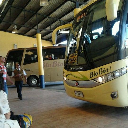 Photo taken at Terminal Buses Bio Bio Victoria by Nicole D. on 2/9/2012