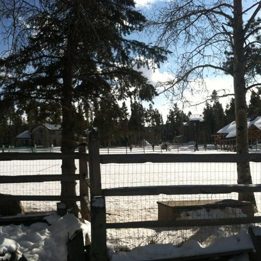 รูปภาพถ่ายที่ Carter Dog Park โดย Nora S. เมื่อ 2/5/2012
