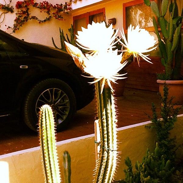 Foto scattata a alchimissa b&b da Lucia R. il 6/3/2012