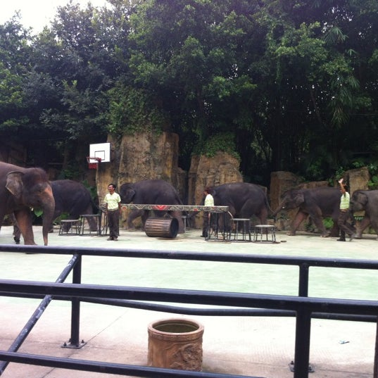 Photo taken at Xiang Jiang Safari Park, Guangzhou by Red F. on 8/21/2012