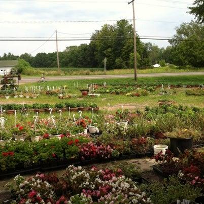 Photos at Hoxie Farms - Fulton, NY