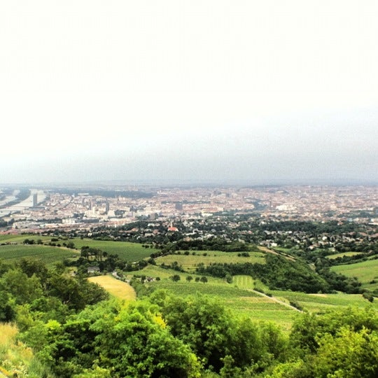 Photo taken at Kahlenberg by Ван З. on 6/21/2012