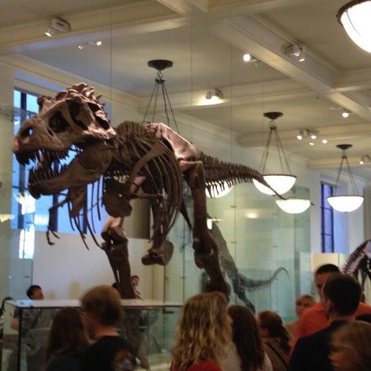Photo taken at David H. Koch Dinosaur Wing by Joshua L. on 8/6/2012