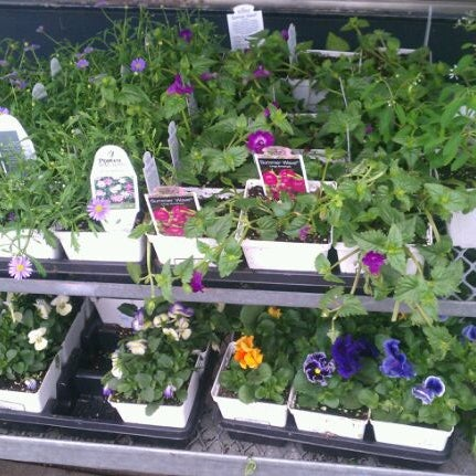 Photo taken at Fragers Hardware by Olivia M. on 3/19/2012