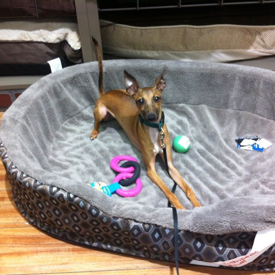Photo taken at Petco by Max B. on 7/27/2012