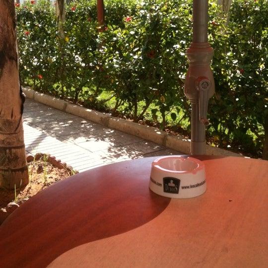 Photo taken at Café Diwan by Youssef B. on 5/3/2011