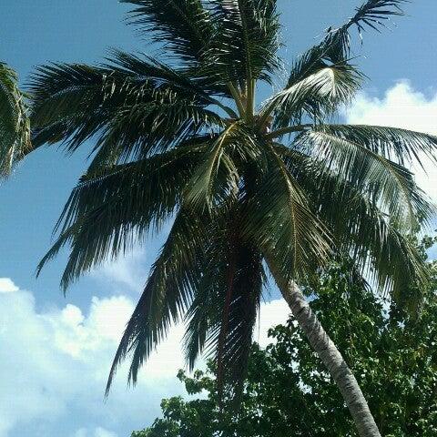 Photo taken at Vilamendhoo Island Resort & Spa by Oleg K. on 7/22/2012