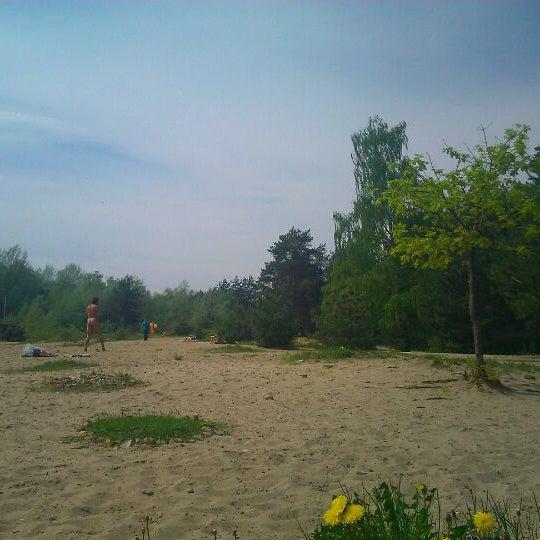 египет пляжи с белым песком фото