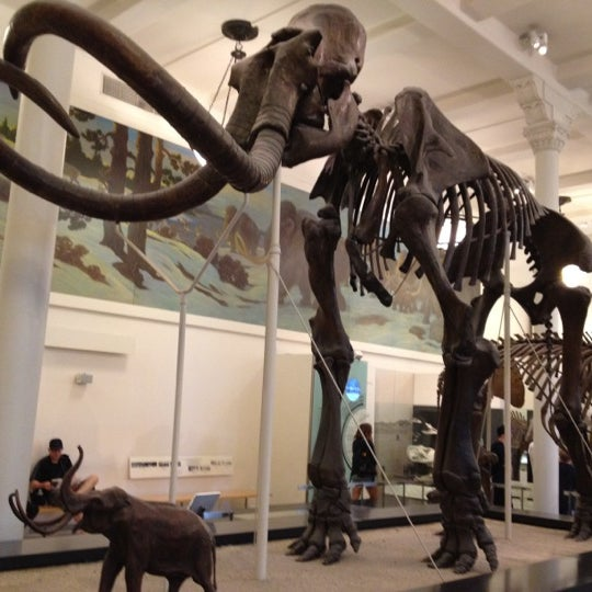 Photo taken at David H. Koch Dinosaur Wing by Christa E. on 7/23/2012