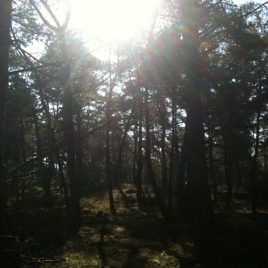 Photo taken at Nationaal Park De Hoge Veluwe by Joris v. on 10/15/2011