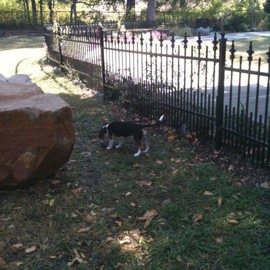 Gramercy Dog Park Plano Tx