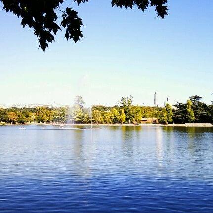 Photo taken at Lago de la Casa de Campo by Dan v. on 10/12/2011