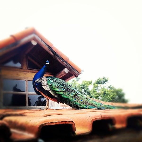 Foto tirada no(a) Fazenda da Comadre por Arthur F. em 7/31/2012