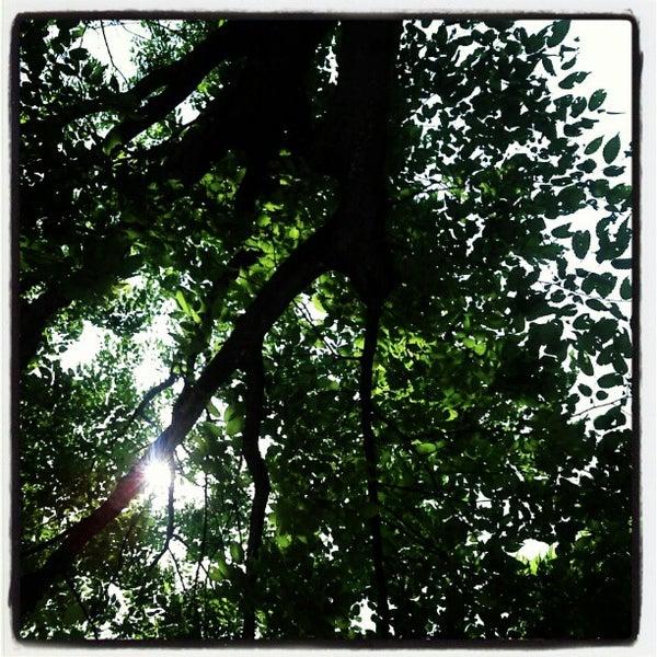 Photo taken at Yuldong Park by Bongjun H. on 5/20/2012