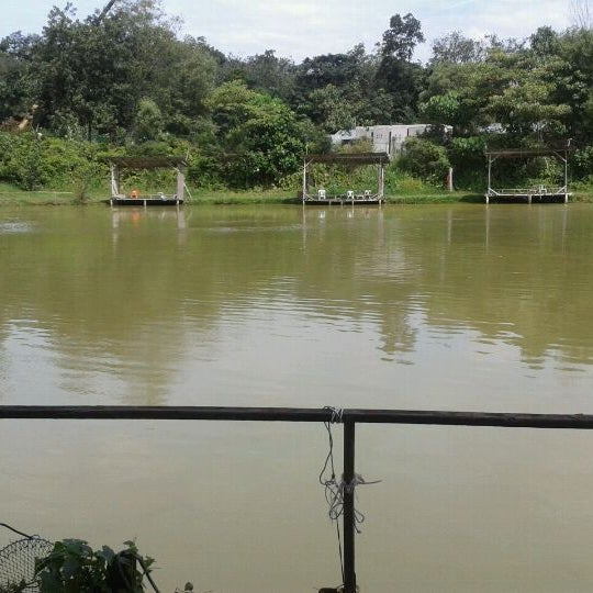 Bukit serdang fishing pond lake for Pond fishing tips